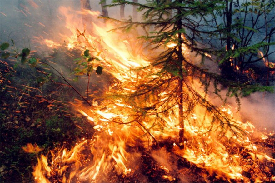 Σιβηρία: Ανυπολόγιστη καταστροφή από τις πυρκαγιές – Συγκλονιστικές εικόνες+video
