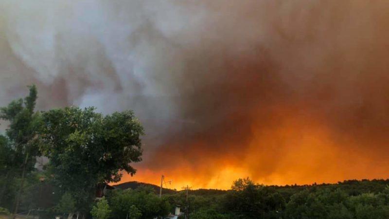 Ανεξέλεγκτη η μεγάλη πυρκαγιά στην Εύβοια(Φωτ.+video).