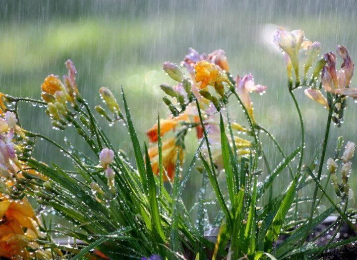 Βροχές σε αρκετές περιοχές. Πρόγνωση καιρού Κυριακή 3/5/20.