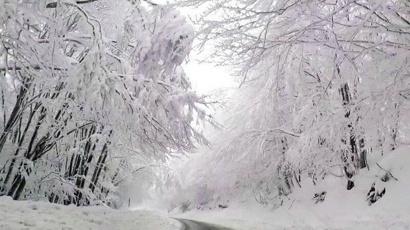 Χιονόπτωση στην Φλώρινα 13/1/21.