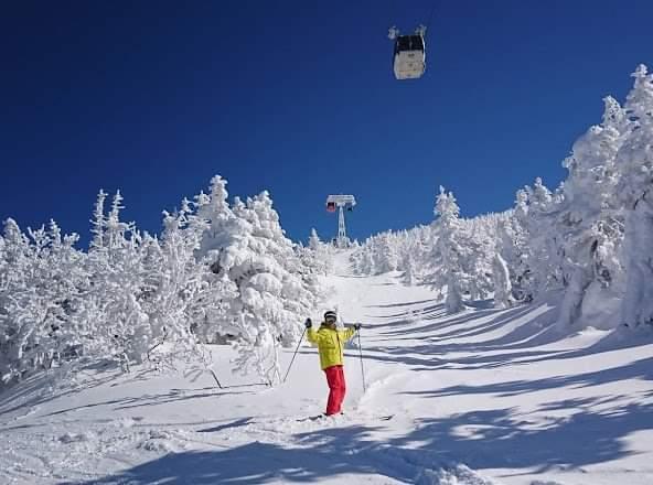 Τα «τέρατα του χιονιού» που εμφανίζονται κάθε χειμώνα στην Ιαπωνία