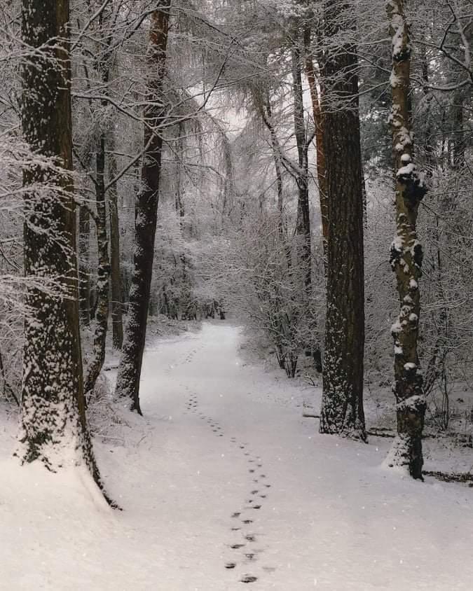 Πρόγνωση καιρού Παρασκευή 15/1/21.Βροχές και χιόνια σε δύο ημίχρονα.