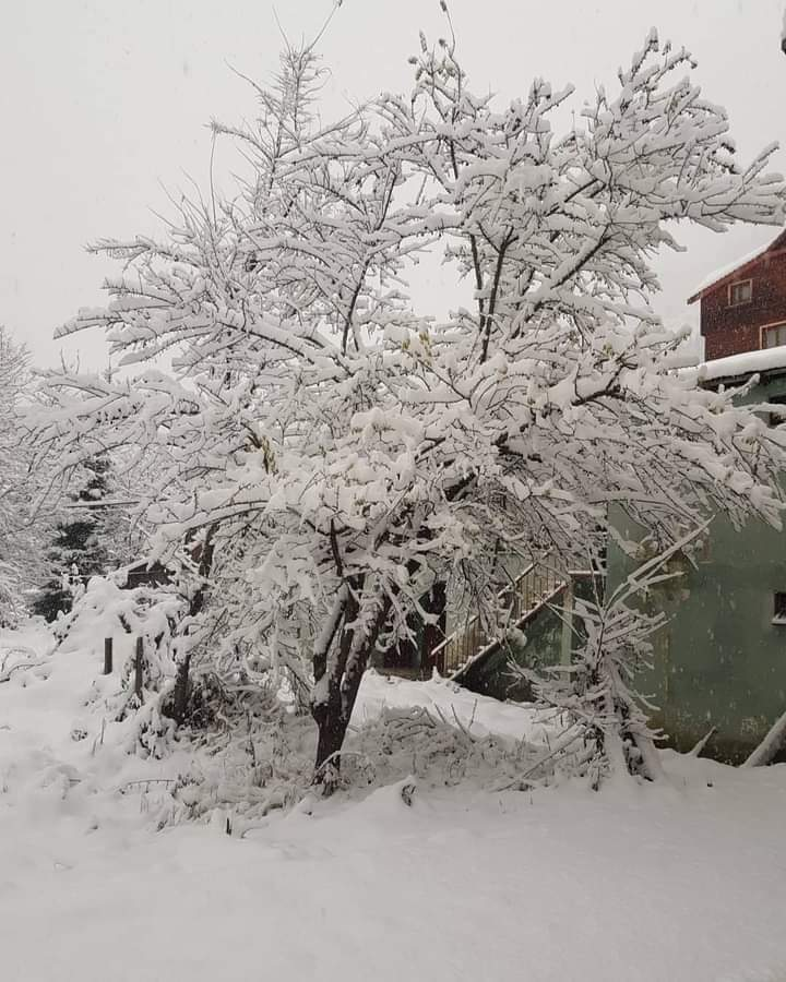 Χειμώνας προ των πυλών;….. ή όχι;…. Μια πρώτη ματιά με τα νεότερα προγνωστικά στοιχεία.